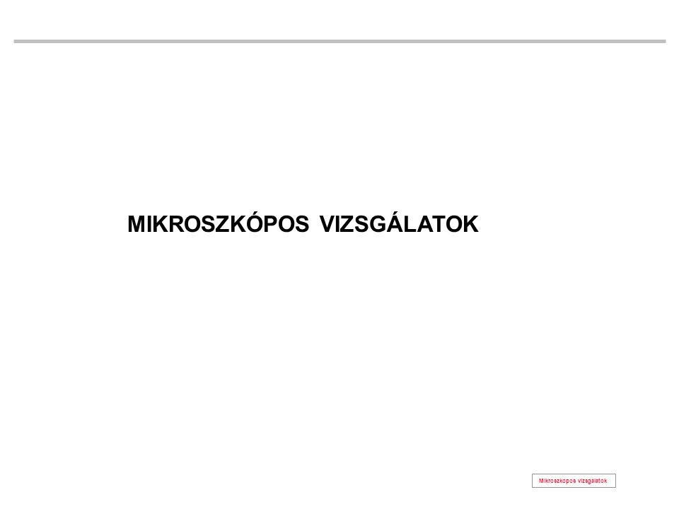 MIKROSZKÓPOS VIZSGÁLATOK