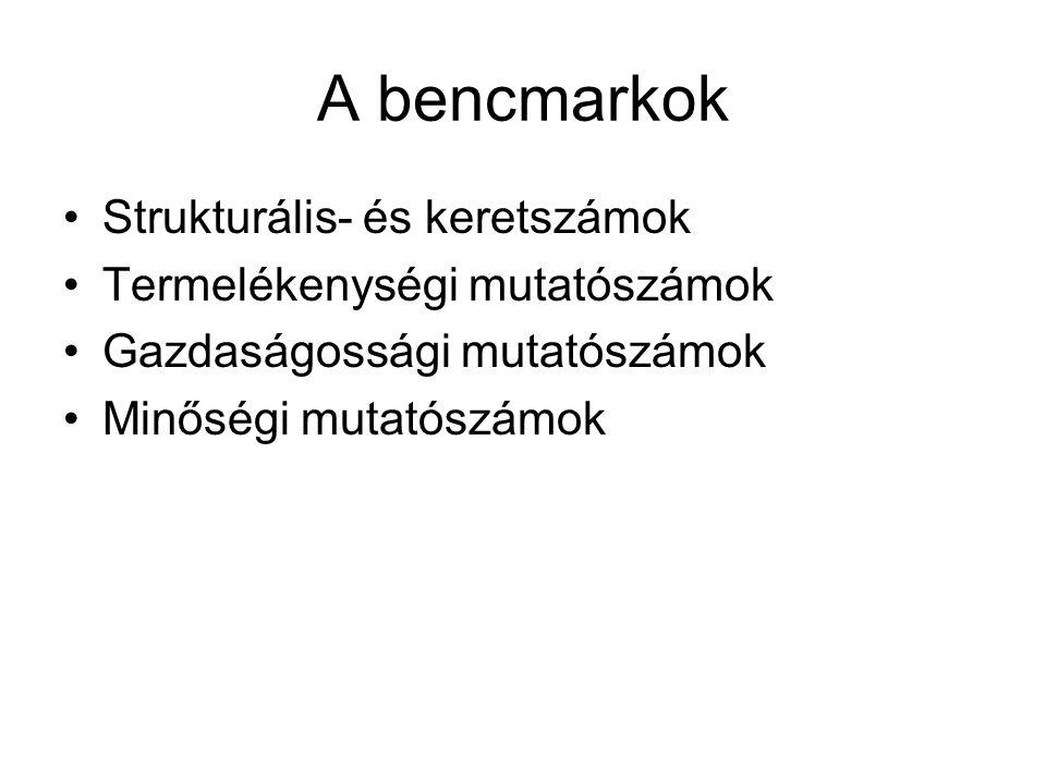 A bencmarkok Strukturális- és keretszámok Termelékenységi mutatószámok