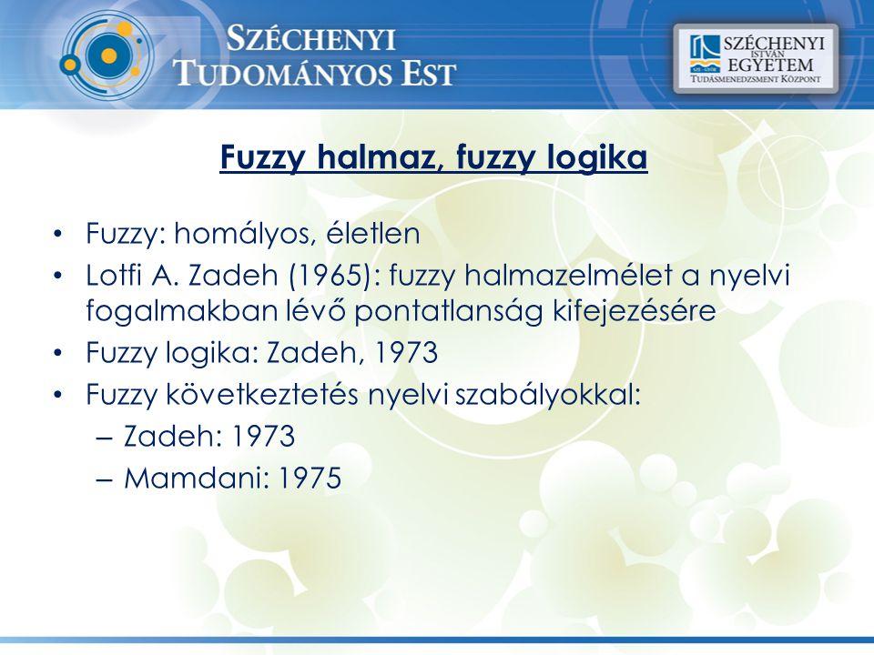 Fuzzy halmaz, fuzzy logika