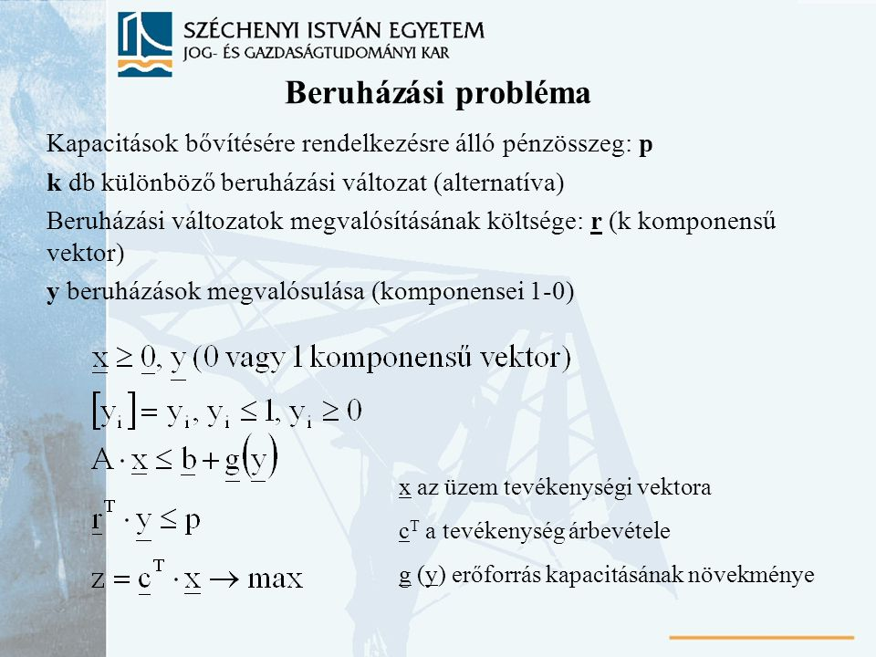Beruházási probléma Kapacitások bővítésére rendelkezésre álló pénzösszeg: p. k db különböző beruházási változat (alternatíva)