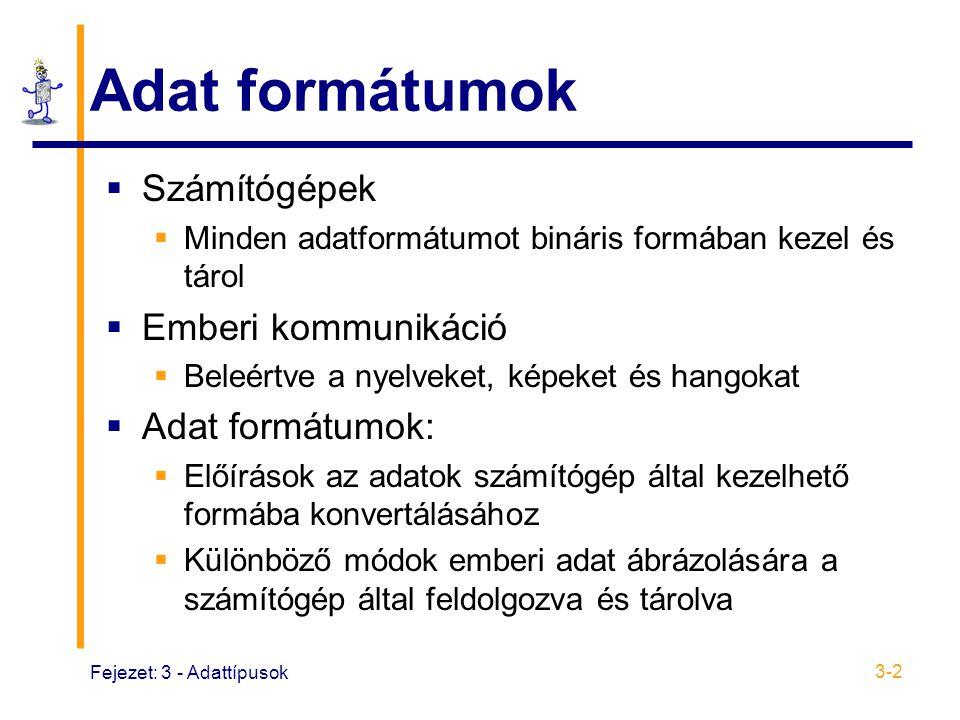 Adat formátumok Számítógépek Emberi kommunikáció Adat formátumok: