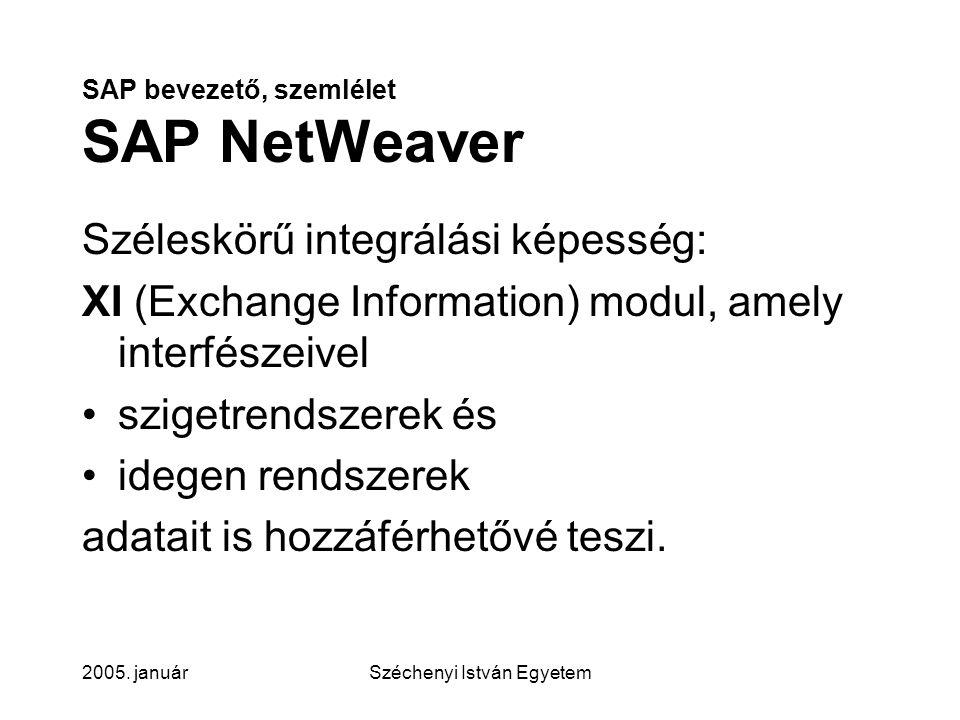 SAP bevezető, szemlélet SAP NetWeaver