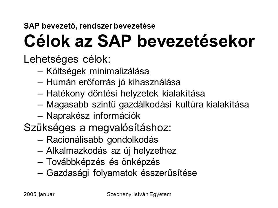 SAP bevezető, rendszer bevezetése Célok az SAP bevezetésekor