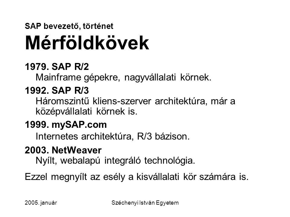 SAP bevezető, történet Mérföldkövek