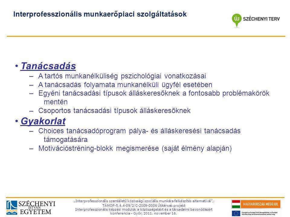 Tanácsadás Gyakorlat Interprofesszionális munkaerőpiaci szolgáltatások