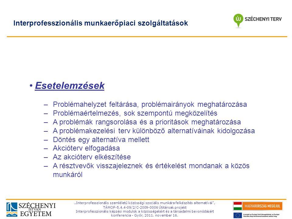 Esetelemzések Interprofesszionális munkaerőpiaci szolgáltatások