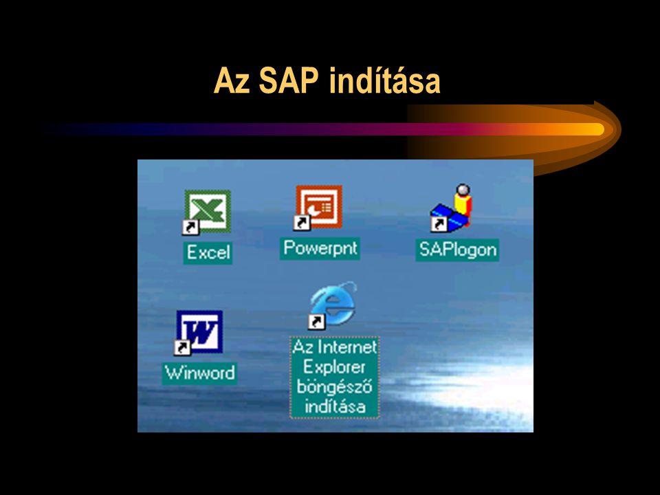 Az SAP indítása