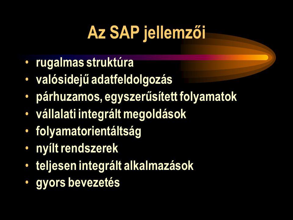Az SAP jellemzői rugalmas struktúra valósidejű adatfeldolgozás