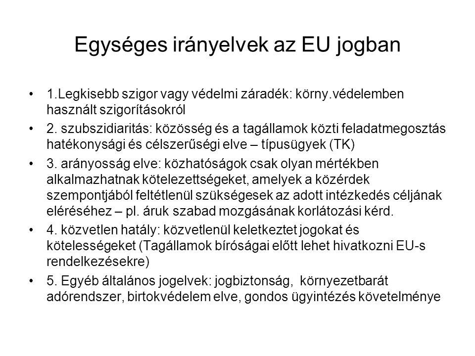 Egységes irányelvek az EU jogban