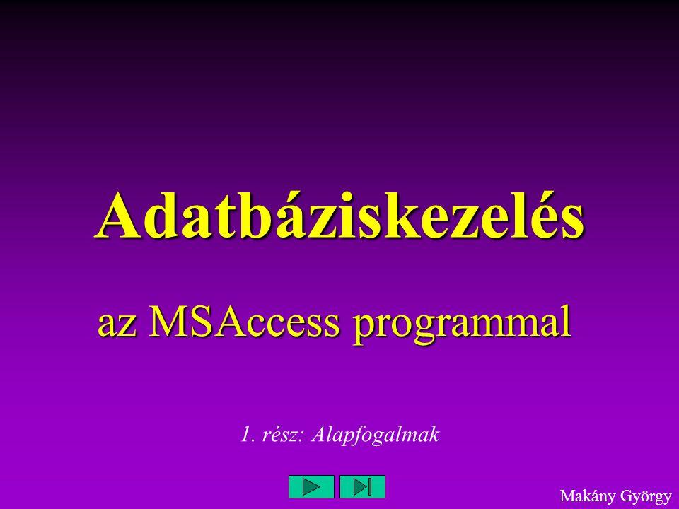 az MSAccess programmal