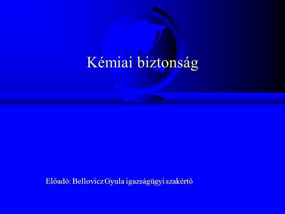 Előadó: Bellovicz Gyula igazságügyi szakértő