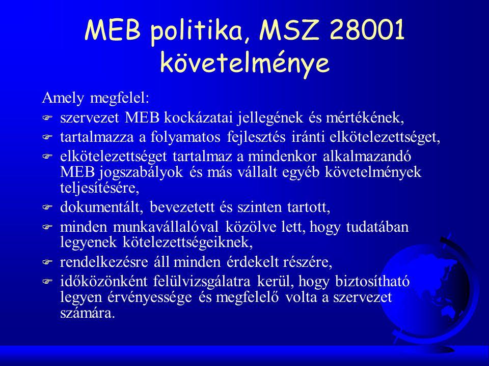 MEB politika, MSZ 28001 követelménye