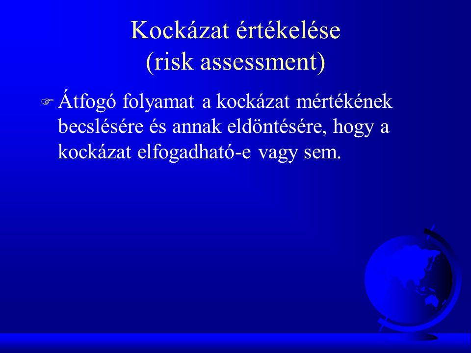 Kockázat értékelése (risk assessment)