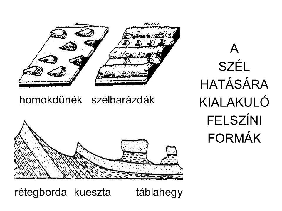 A SZÉL HATÁSÁRA KIALAKULÓ FELSZÍNI FORMÁK