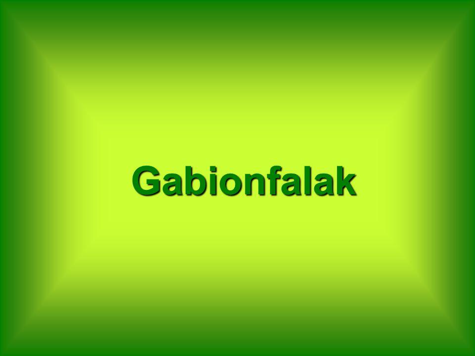 Gabionfalak
