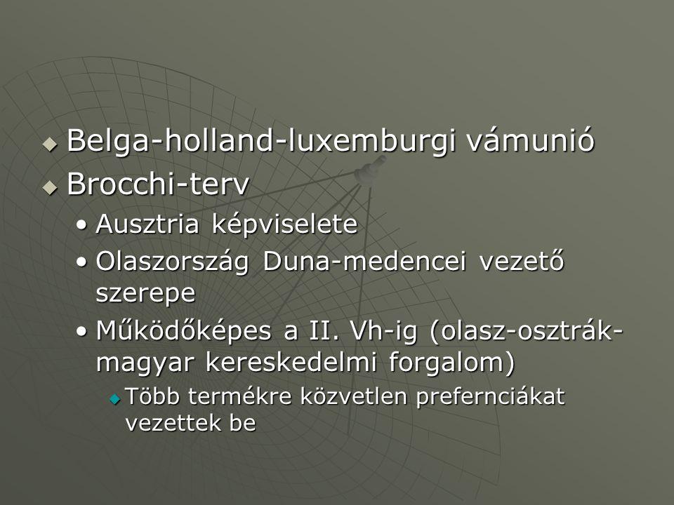 Belga-holland-luxemburgi vámunió Brocchi-terv