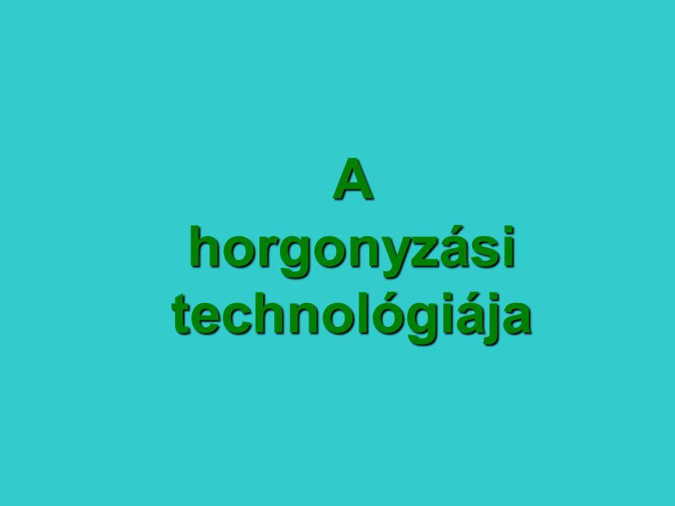 A horgonyzási technológiája