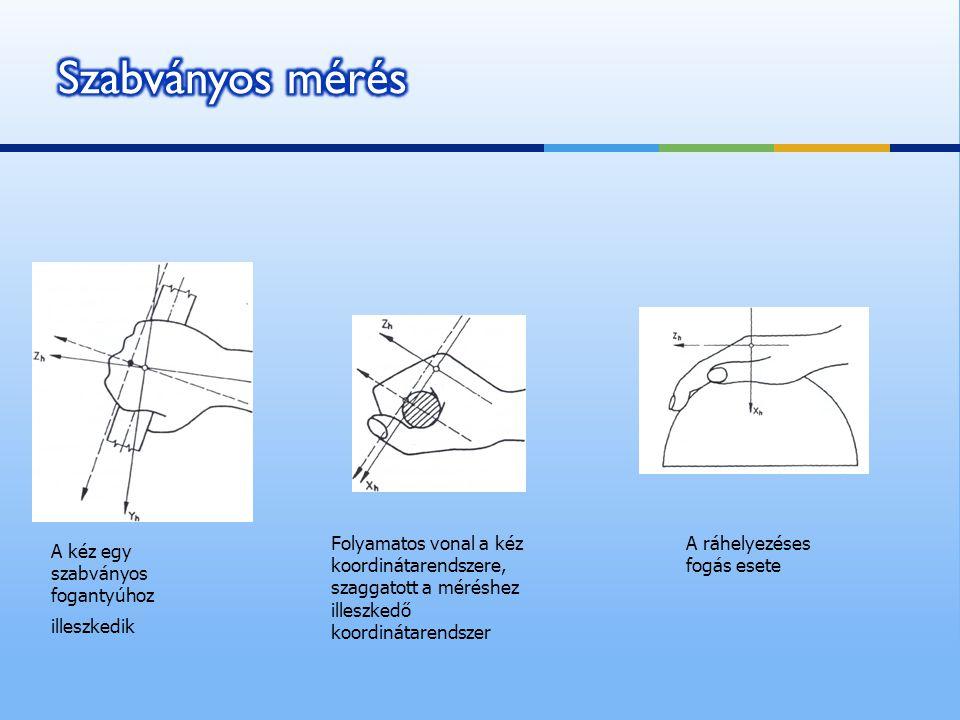 Szabványos mérés Folyamatos vonal a kéz koordinátarendszere, szaggatott a méréshez illeszkedő koordinátarendszer.