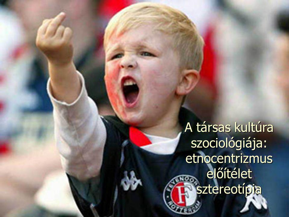 A társas kultúra szociológiája: etnocentrizmus