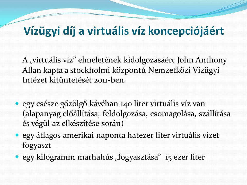 Vízügyi díj a virtuális víz koncepciójáért
