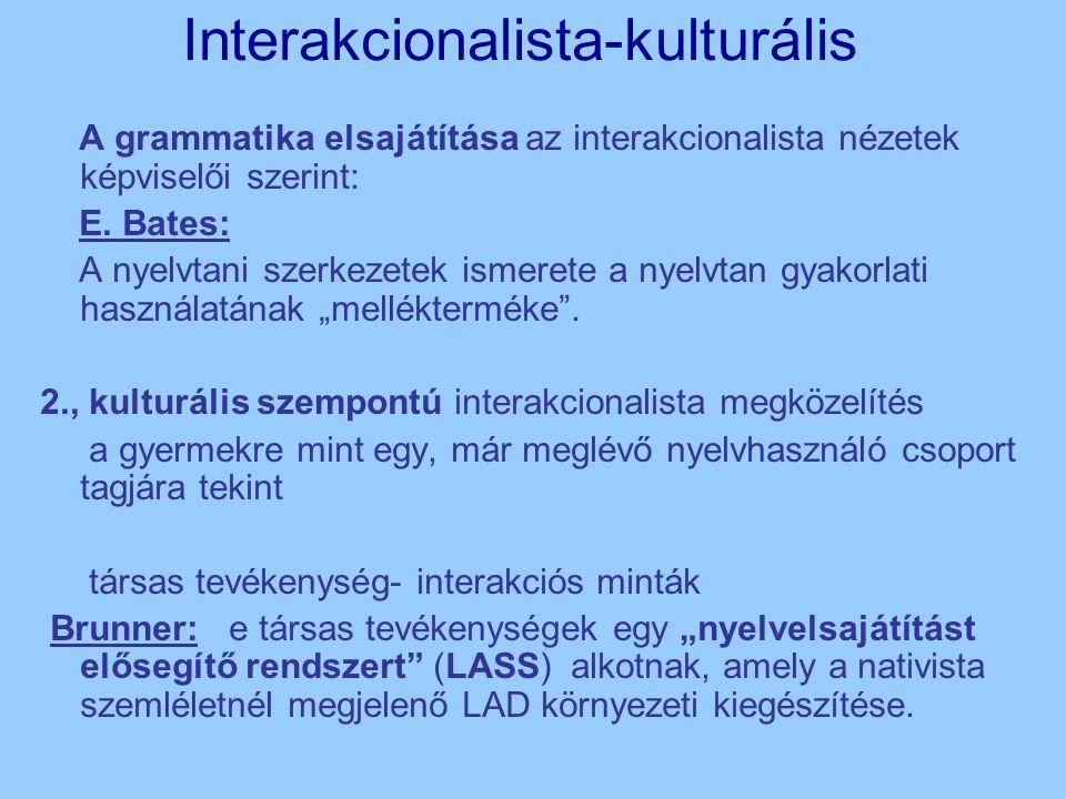 Interakcionalista-kulturális