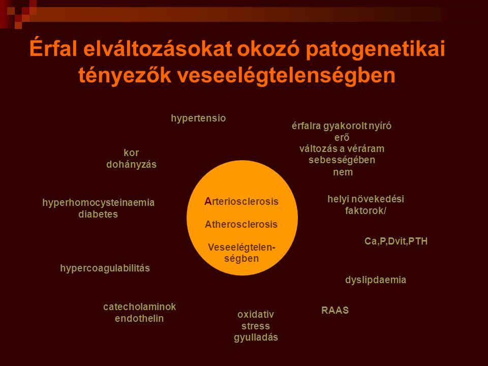 Érfal elváltozásokat okozó patogenetikai tényezők veseelégtelenségben