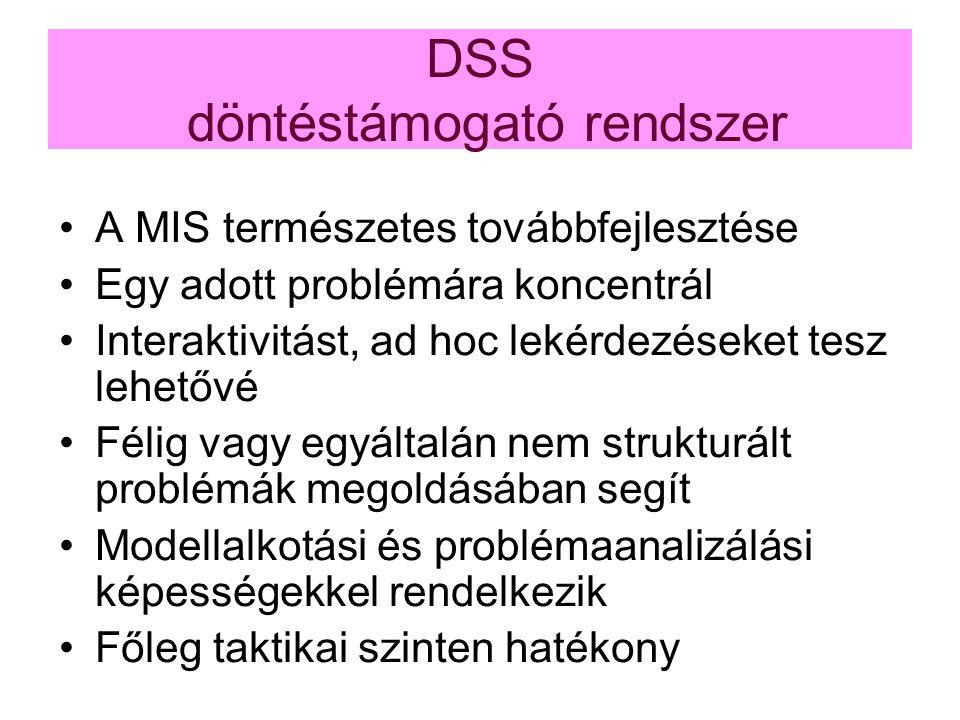 DSS döntéstámogató rendszer