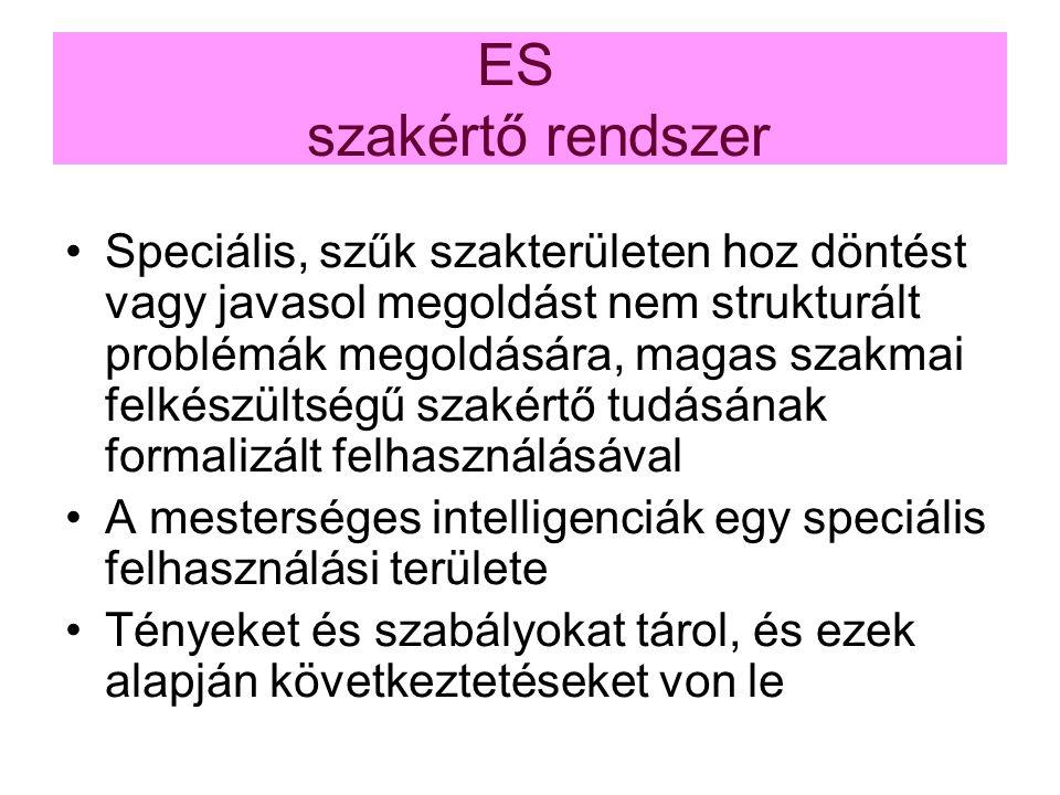 ES szakértő rendszer