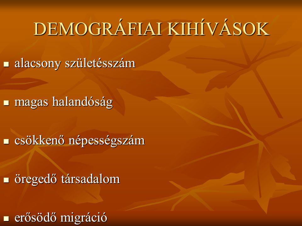 DEMOGRÁFIAI KIHÍVÁSOK