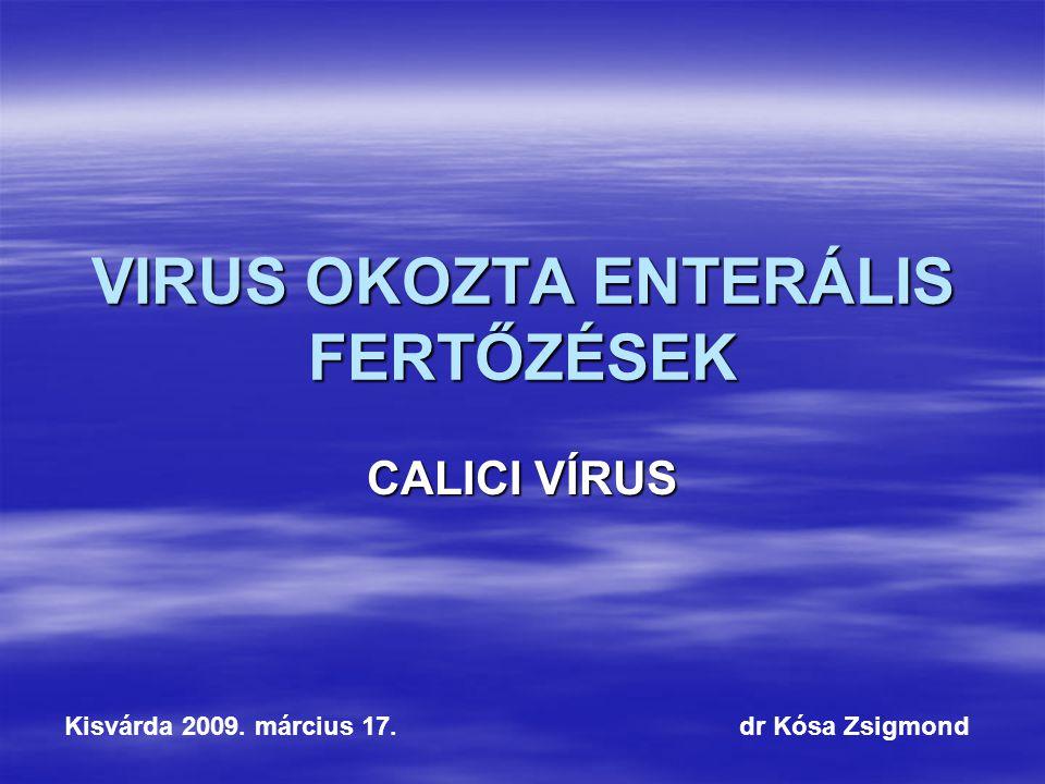 VIRUS OKOZTA ENTERÁLIS FERTŐZÉSEK