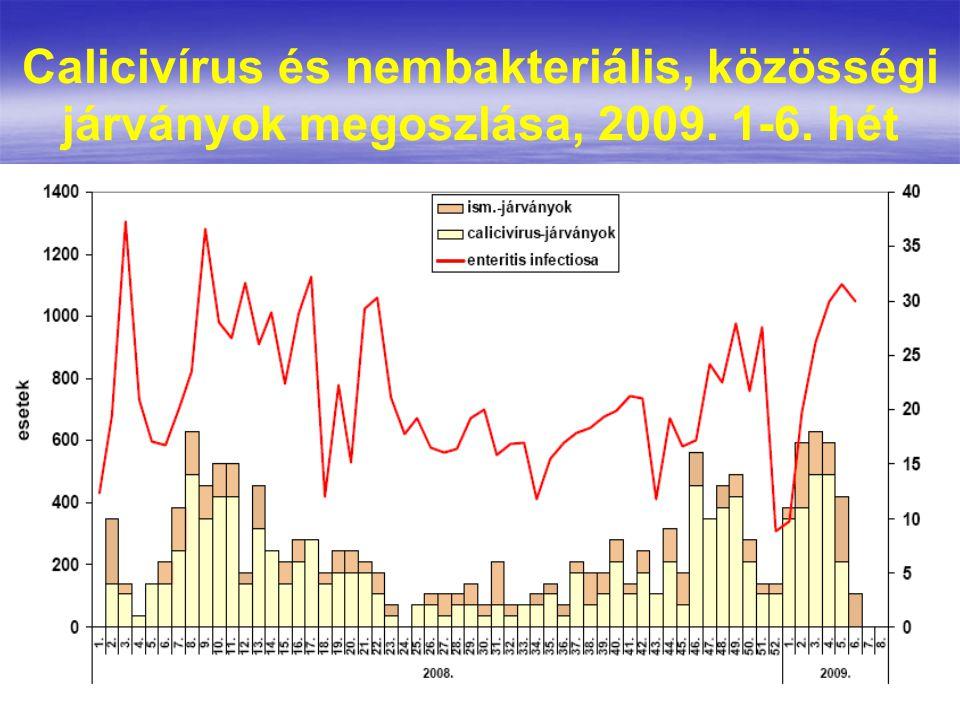 Calicivírus és nembakteriális, közösségi járványok megoszlása, 2009