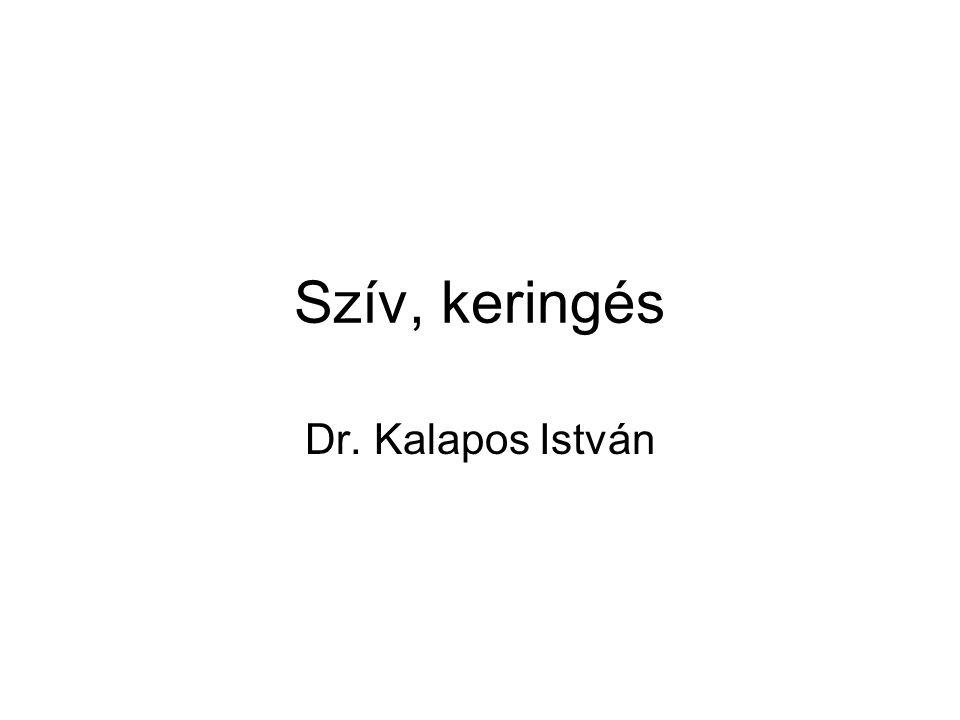 Szív, keringés Dr. Kalapos István