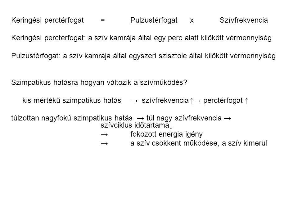 Keringési perctérfogat = Pulzustérfogat x Szívfrekvencia