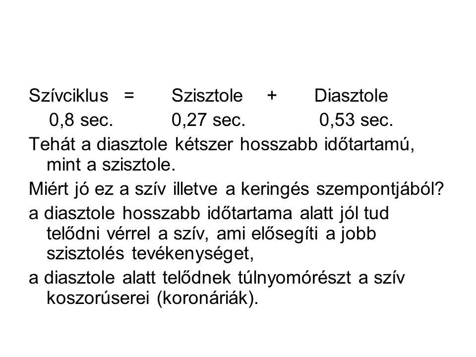Szívciklus = Szisztole + Diasztole