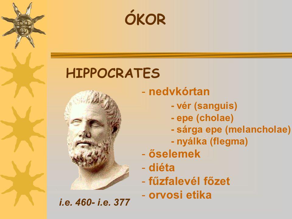 ÓKOR HIPPOCRATES nedvkórtan - vér (sanguis) őselemek diéta