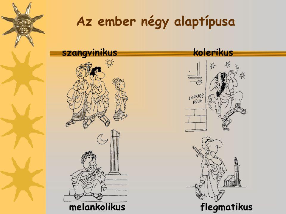 Az ember négy alaptípusa