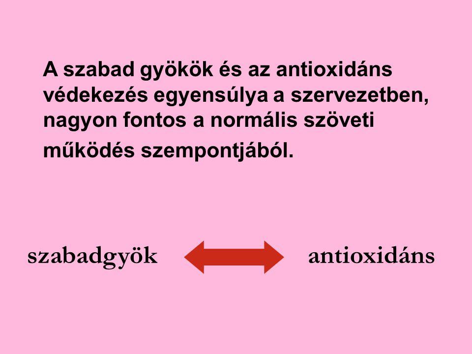 szabadgyök antioxidáns
