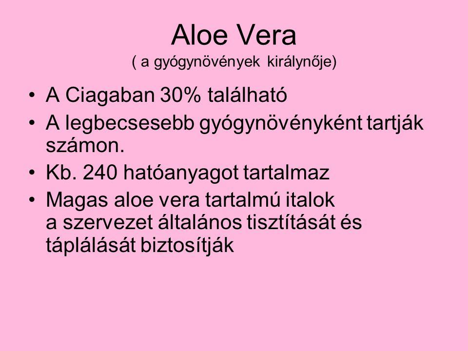 Aloe Vera ( a gyógynövények királynője)