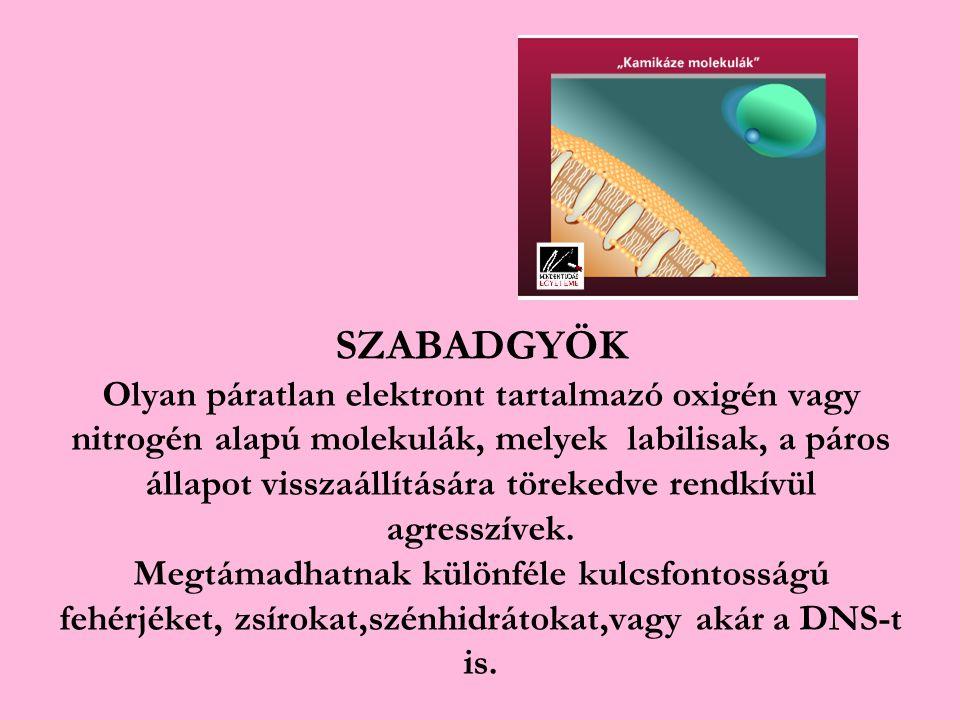 SZABADGYÖK