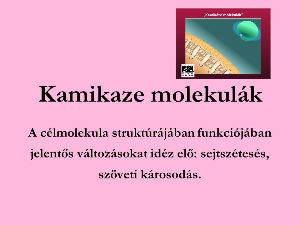 Kamikaze molekulák A célmolekula struktúrájában funkciójában jelentős változásokat idéz elő: sejtszétesés, szöveti károsodás.