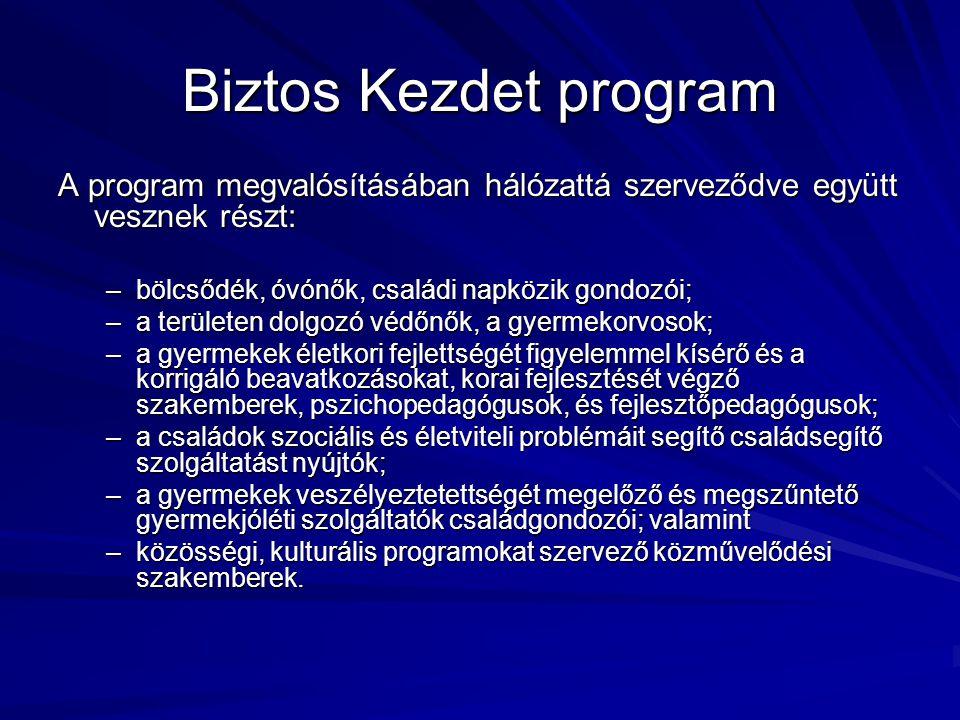 Biztos Kezdet program A program megvalósításában hálózattá szerveződve együtt vesznek részt: bölcsődék, óvónők, családi napközik gondozói;