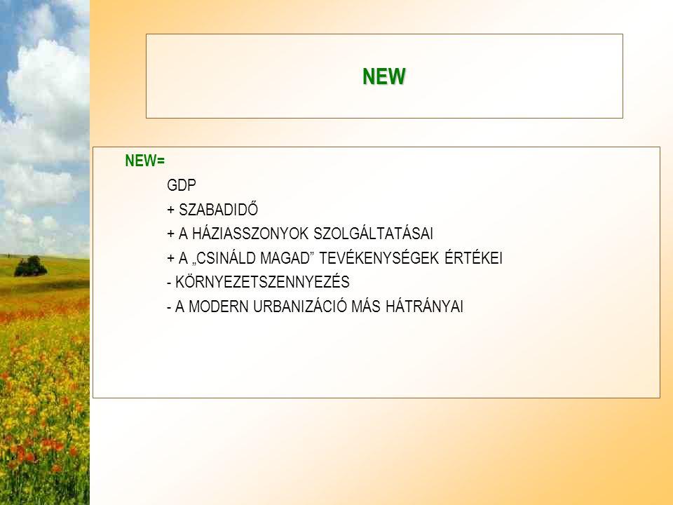 NEW NEW= GDP + SZABADIDŐ + A HÁZIASSZONYOK SZOLGÁLTATÁSAI