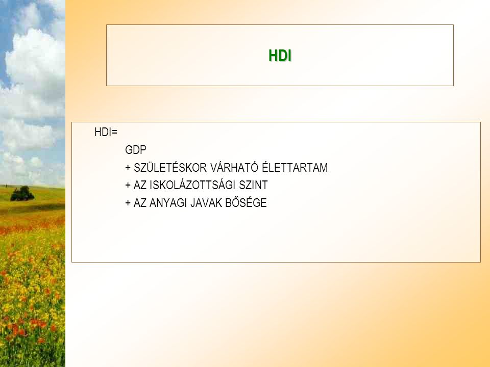HDI HDI= GDP + SZÜLETÉSKOR VÁRHATÓ ÉLETTARTAM