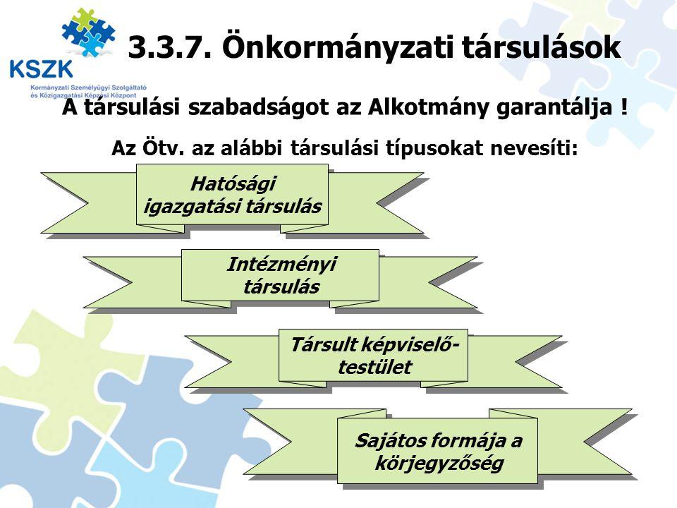 3.3.7. Önkormányzati társulások