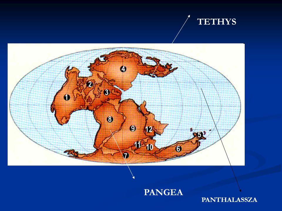 TETHYS PANGEA PANTHALASSZA