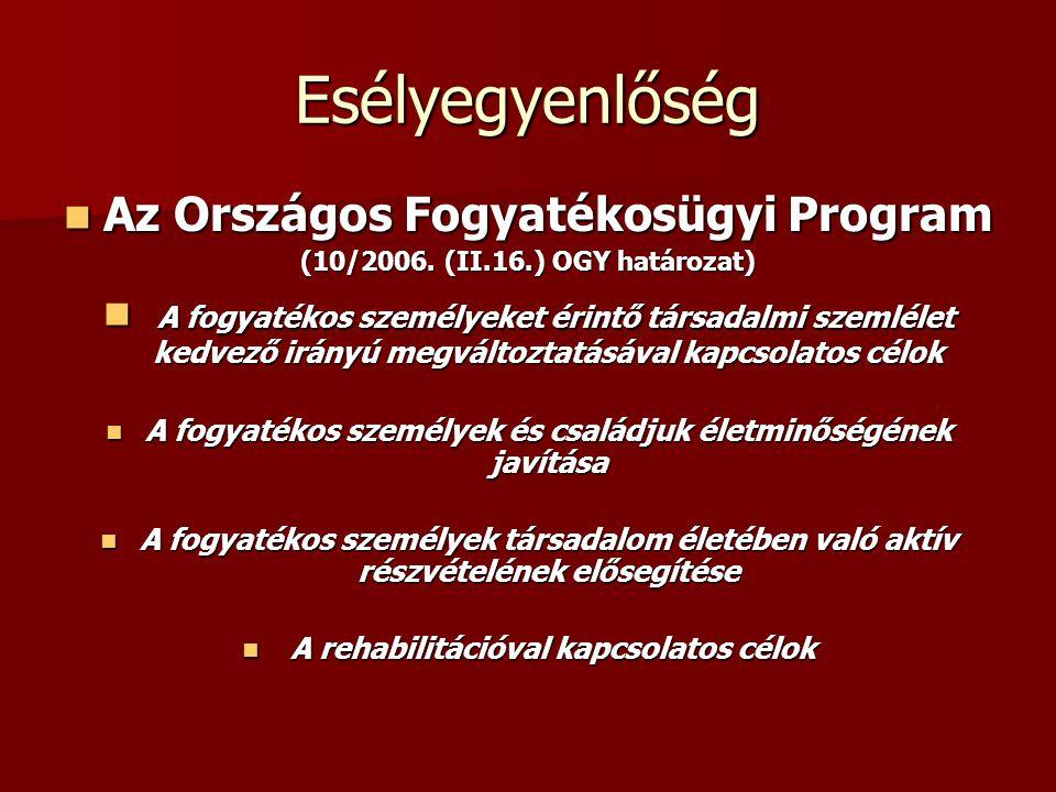 Az Országos Fogyatékosügyi Program