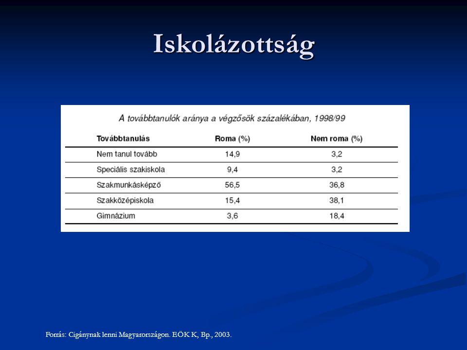 Iskolázottság Forrás: Cigánynak lenni Magyarországon. EÖK K, Bp., 2003.