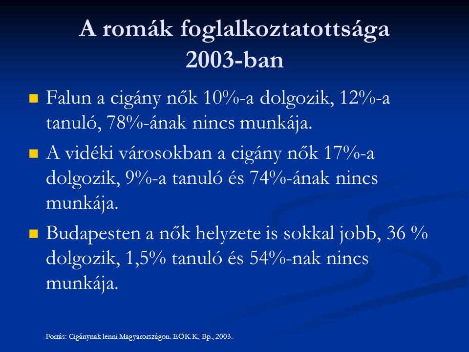A romák foglalkoztatottsága 2003-ban