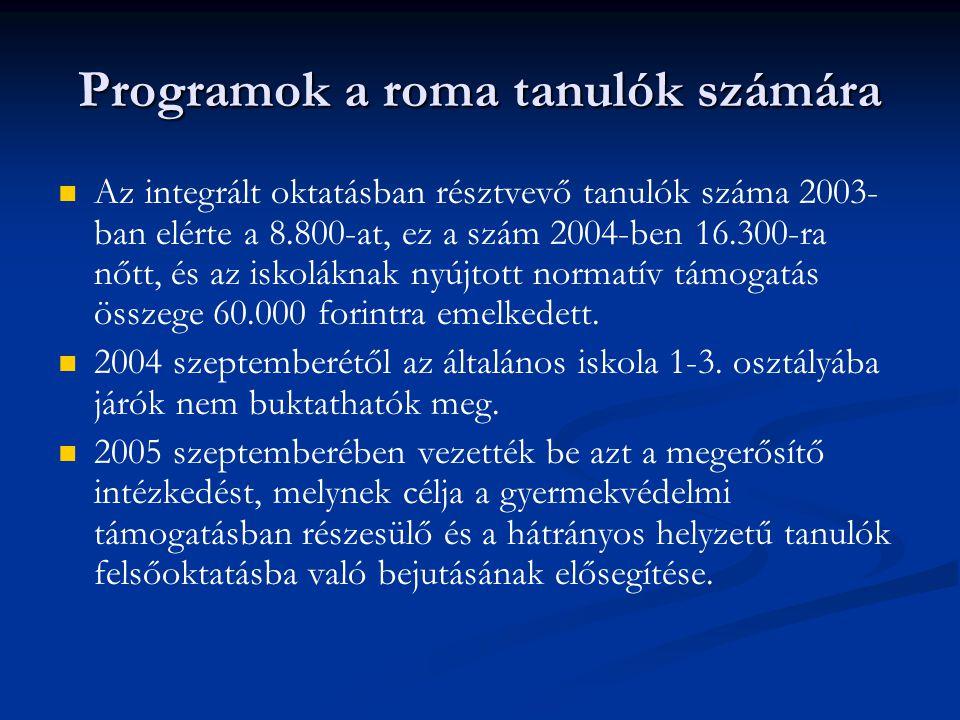 Programok a roma tanulók számára