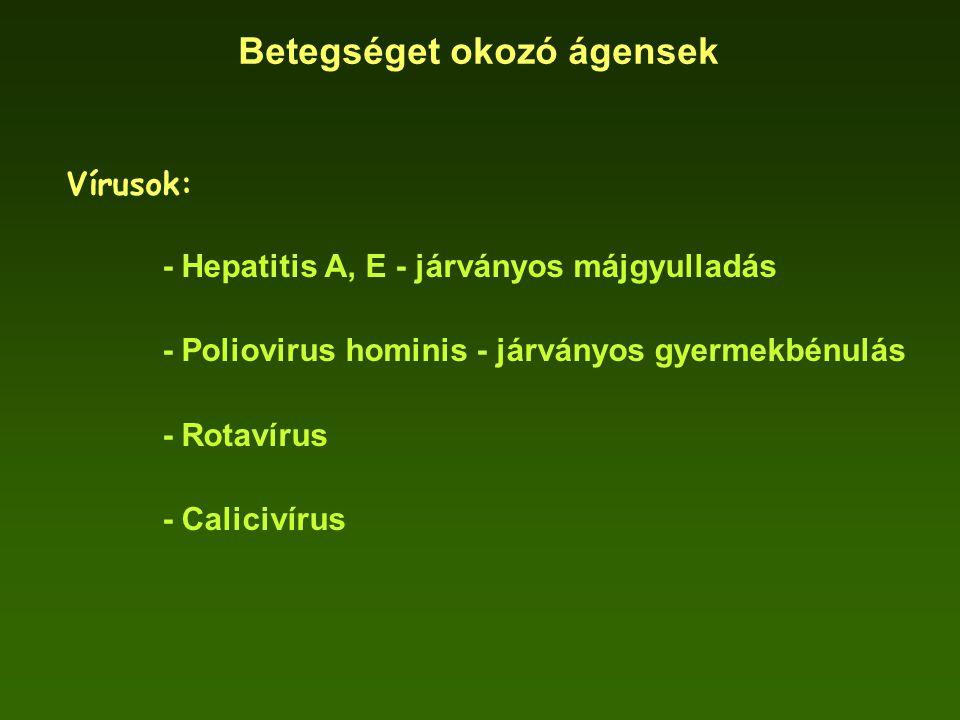 Betegséget okozó ágensek